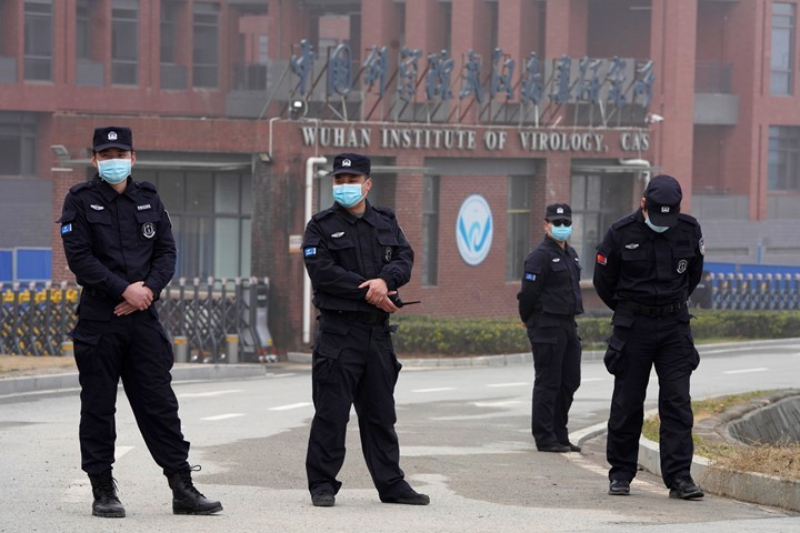 Video Shows Bats at Wuhan Lab Despite Denials from Top Scientist, Gain-Of-Function Backer. Admission: Chinese Lacked Biosecurity Know-How