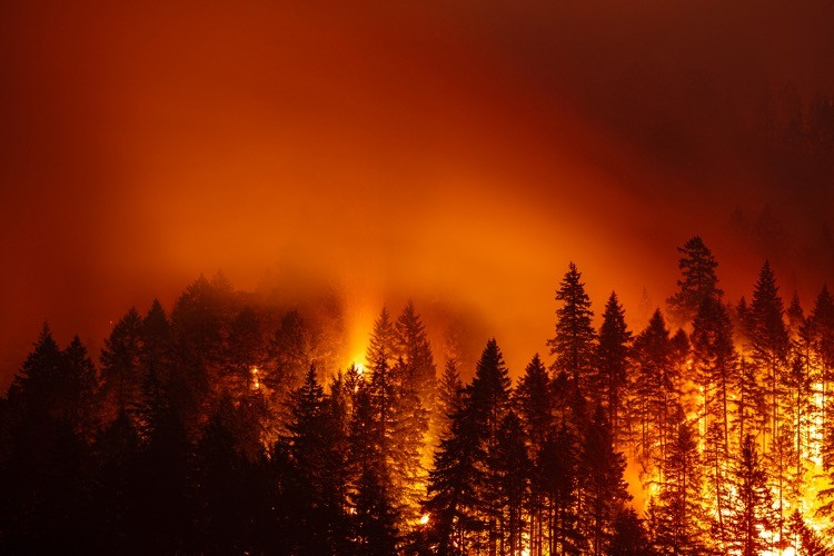 """Feds Caught Deleting Data to Make It Appear That """"Climate Change"""" Causes Wildfires"""